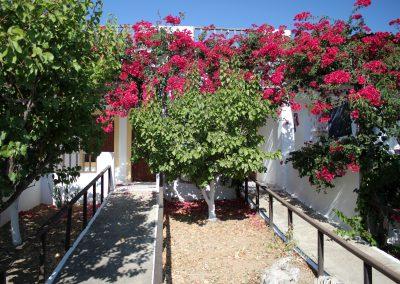 The most flowery studios in karpathos: Scarpantos Studios!